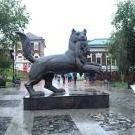 Wolfusha
